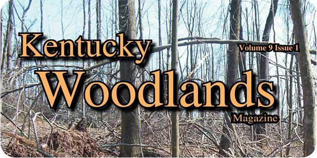 Kentucky Woodlands Magazine