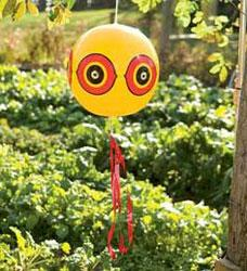 A balloon frightening device.