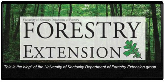 Forestry Extension Blog