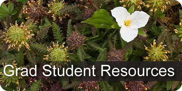 Information on Forestry graduate student resources