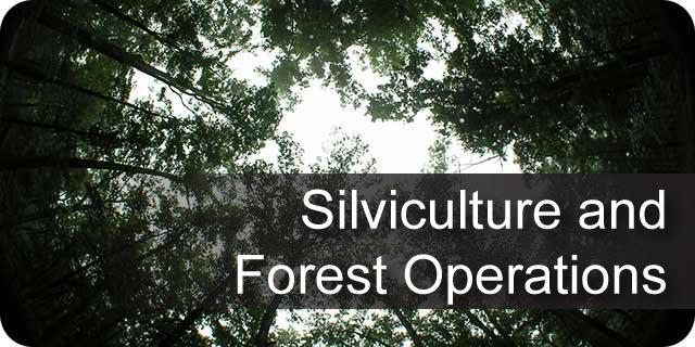 Silviculture and Forest Operations