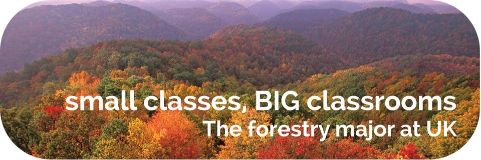 Small classes, BIG classrooms. The forestry major at UK.