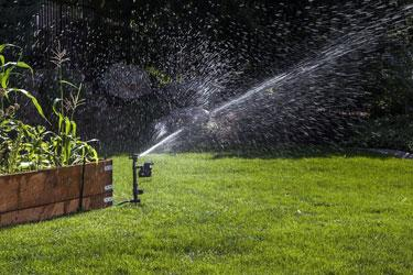 A sprinkler can be used as  a frightening device.