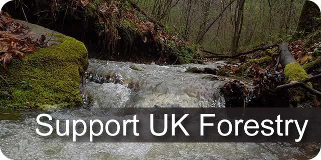 Information on the UK Forestry funding opportunities