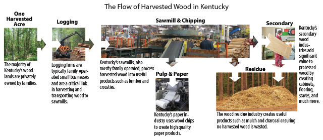 The Flow of Harvested Wood in Kentucky
