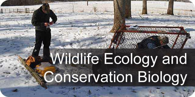 Wildlife Ecology and Conservation Biology