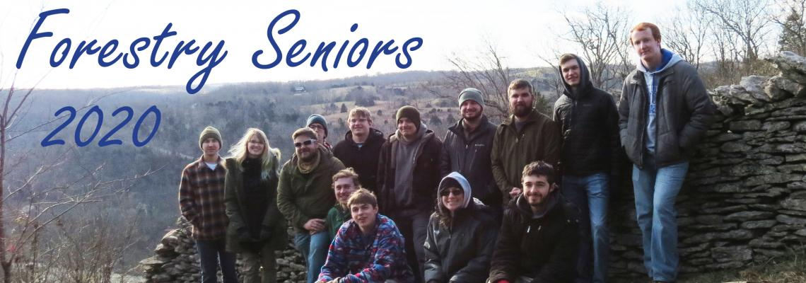 Photo of UK Forestry Seniors 2020