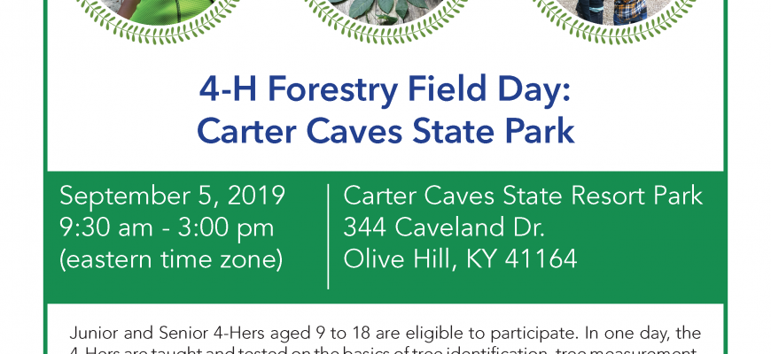 Carter Caves 4H