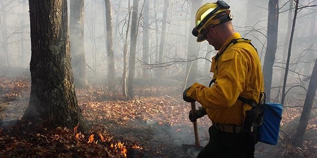 UK Fire Cat working on eastern Kentucky fire