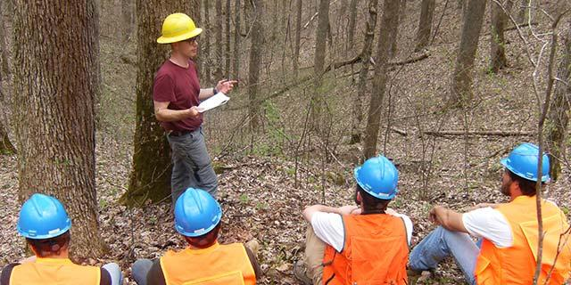 Learn more about the Forestry major at UK