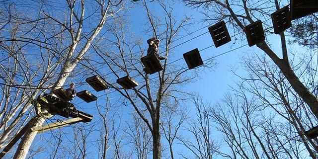 Forestry students at Asbury University's Challenge Course