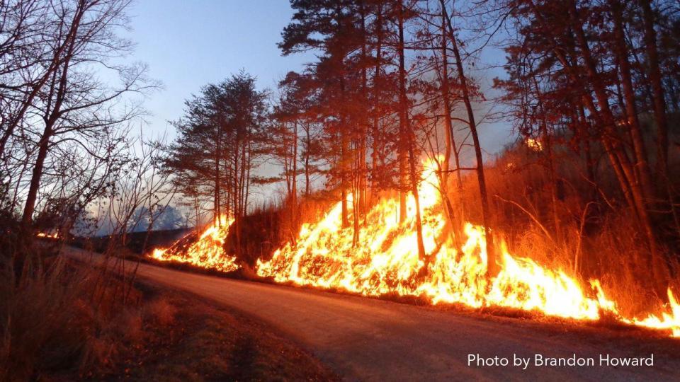Photo of Knox County Wildfire (photo by Brandon Howard)