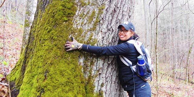 Learn more about reasons to major in forestry.
