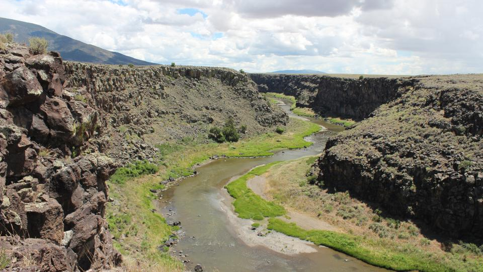 Photo of river otter research area in New Mexico
