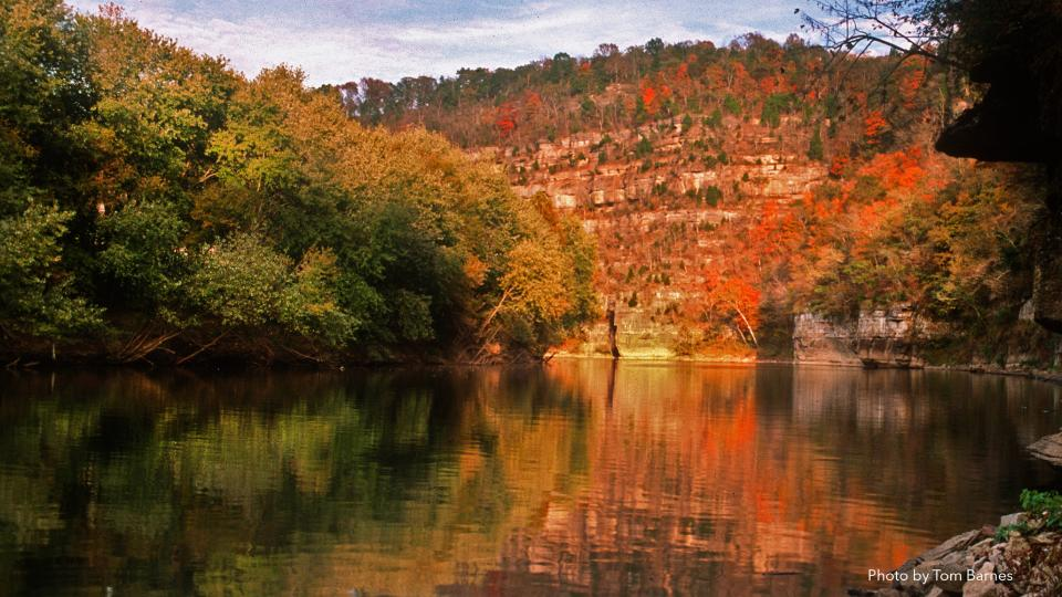 Tom Dorman State Nature Preserve - Garrard County - photo by Thomas Barnes
