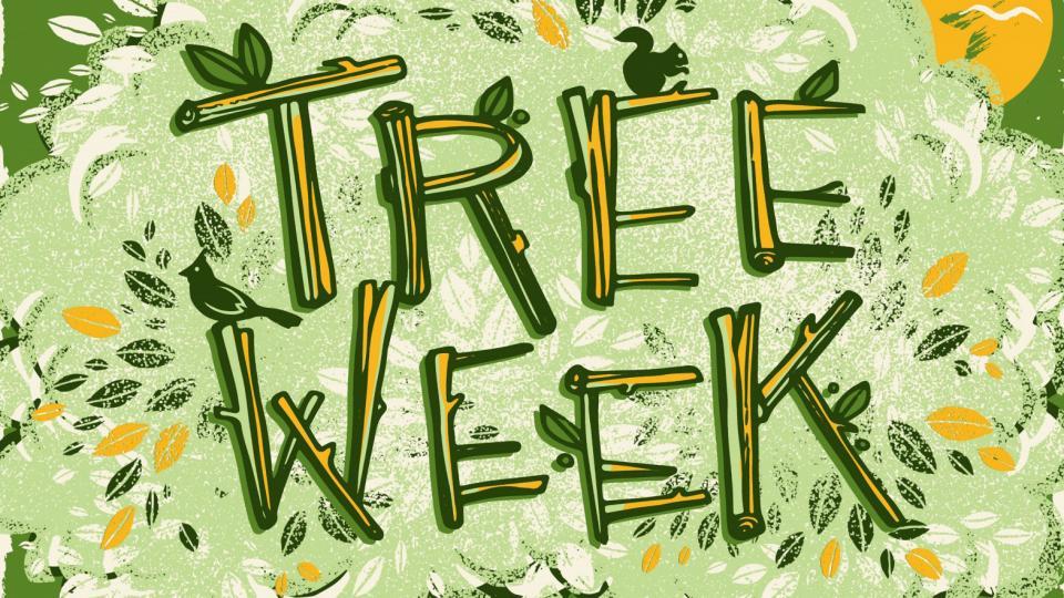 Tree Week 2019