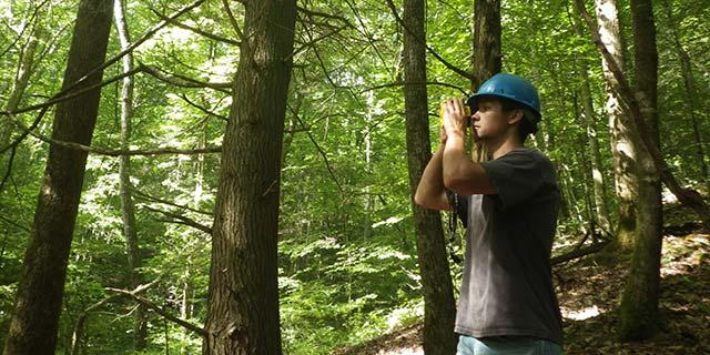 Learn more about the forestry profession.