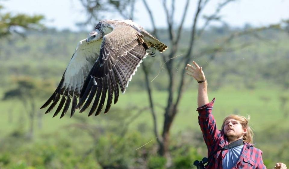 Photo of Stratton Hatfield and Martial Eagle