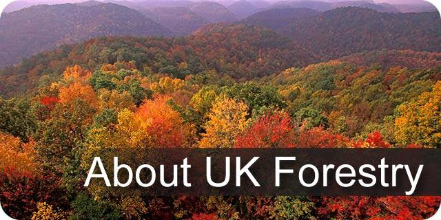 About UK Forestry