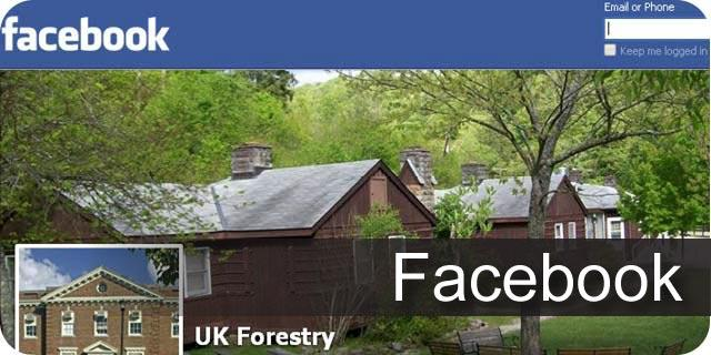 Visit the UK Forestry Facebook Page