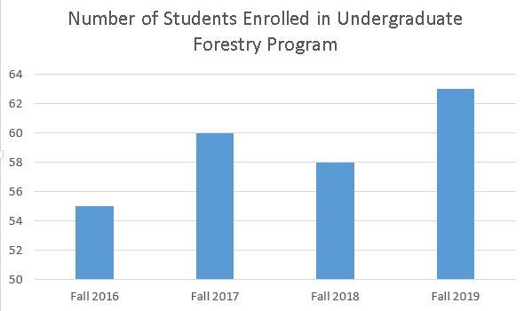 Forestry undergraduate enrollment data (2016-2019)